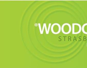 Woodchem 2011